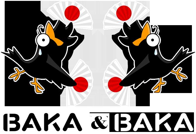 Baka Baka Fiesta (Version DUO !)