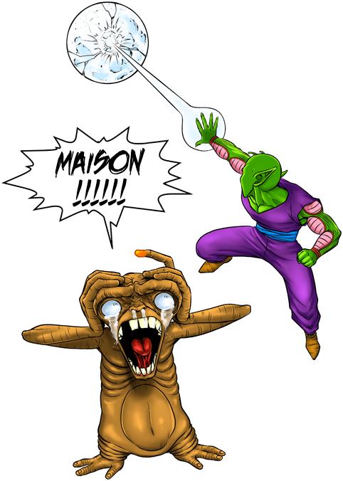 MAISON !!!!!!!!!!!!!!!