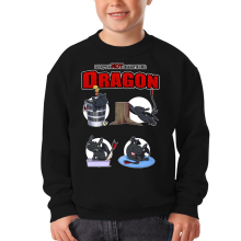 Pull Enfant  parodique Krokmou : How to NOT train your Dragon (Parodie )