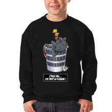 Sweat-shirts  parodique Krokmou la Furie Nocturne : J