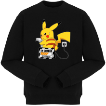 Pulls (French Days)  parodique Pikachu : En Charge... Ne pas déranger ! (Parodie )