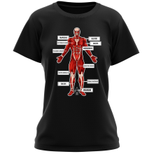 Funny  Women T-shirt - The colossal Titan ( Parody) (Ref:767)